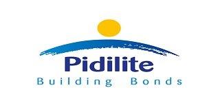 Pidilite Building Bonds